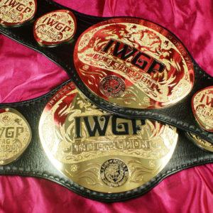IWGP-HW-TAGweb (2)