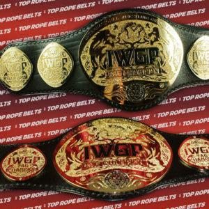 IWGP-HW-TAGweb (3)