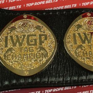 IWGP-HW-TAGweb (4)
