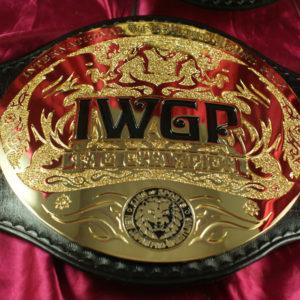 IWGP-HW-TAGweb (5)