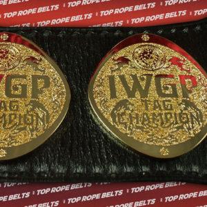 IWGP-HW-TAGweb (6)