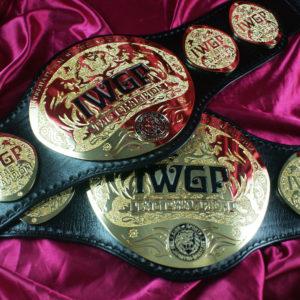 IWGP-HW-TAGweb (9)