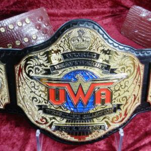 UWF-14-web (10)